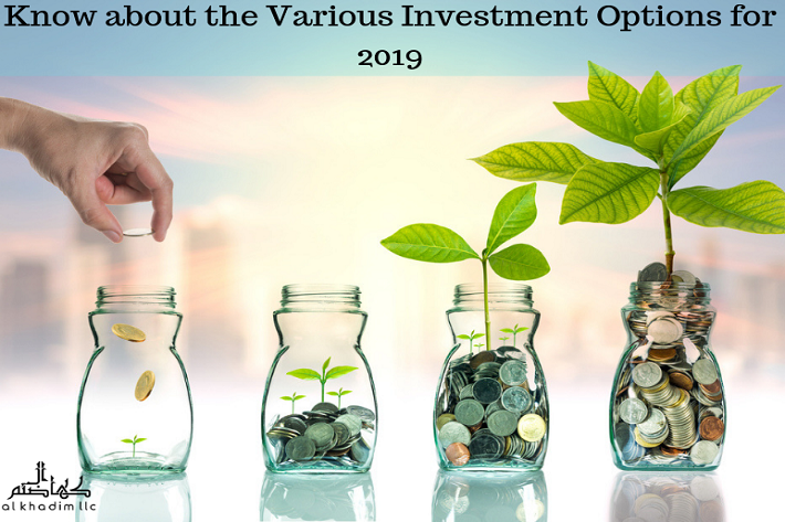 investment options for 2019